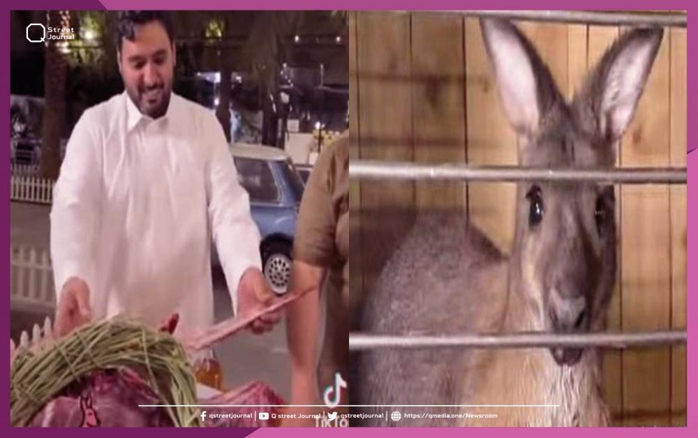 """السلطات السعودية تُوقف صاحب فيديو """"مندي الكنغر"""""""