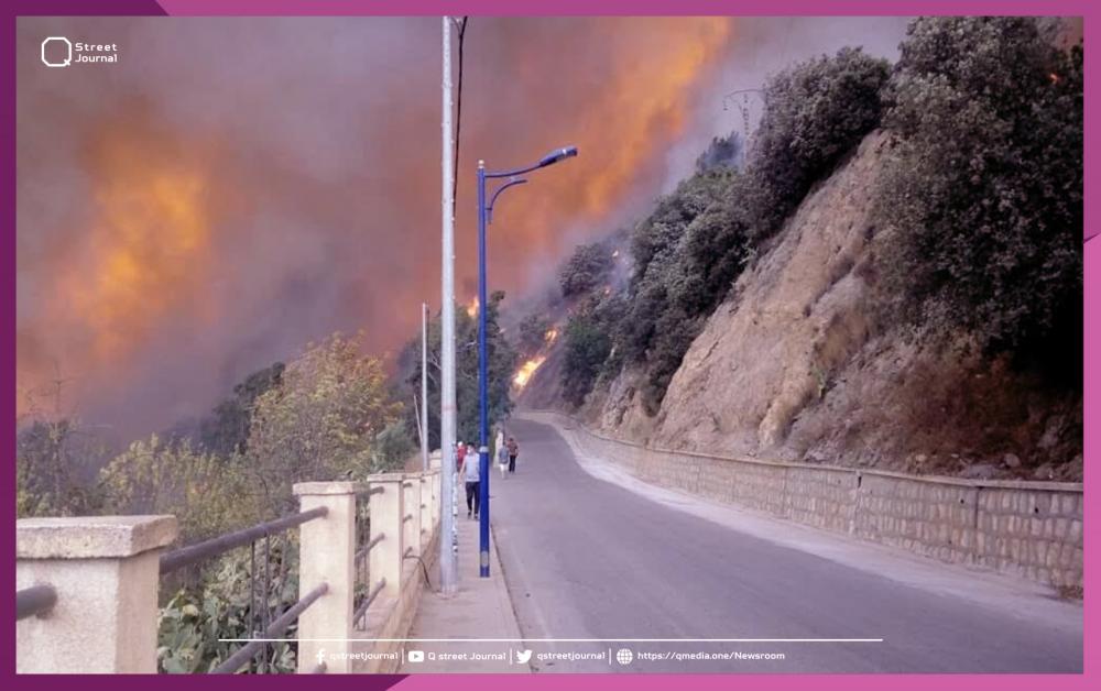 مسؤول جزائري: 4 قتلى جراء حرائق  بفعل فاعل