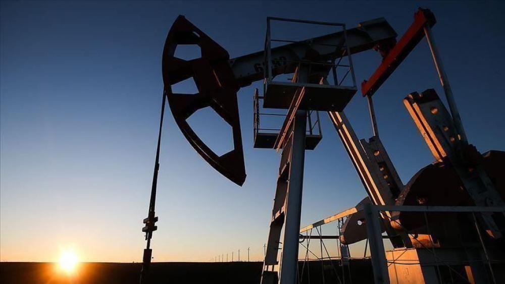 «النفط» يحلق..