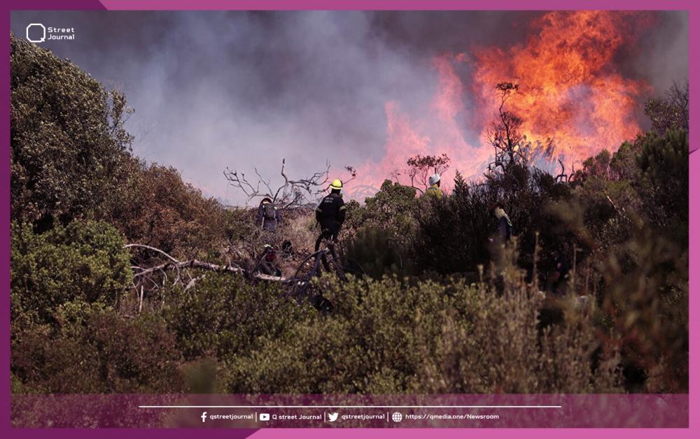 سوريا تسيطر على الحريق الذي امتد من لبنان.. مساعدة على الحدود