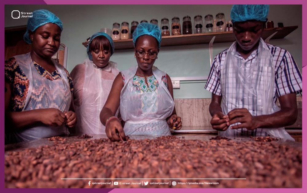 مشروع لتوليد الكهرباء من الكاكاو