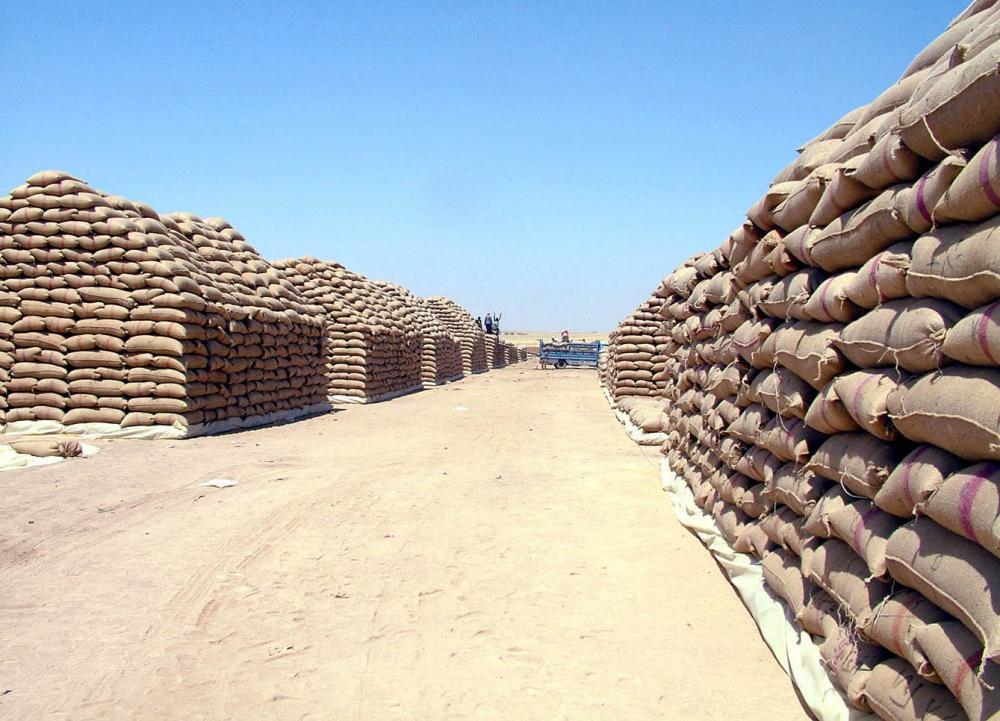 """رغم """"قانون قيصر"""".. سوريا تطرح مناقصة لشراء القمح من هذه المنطقة"""