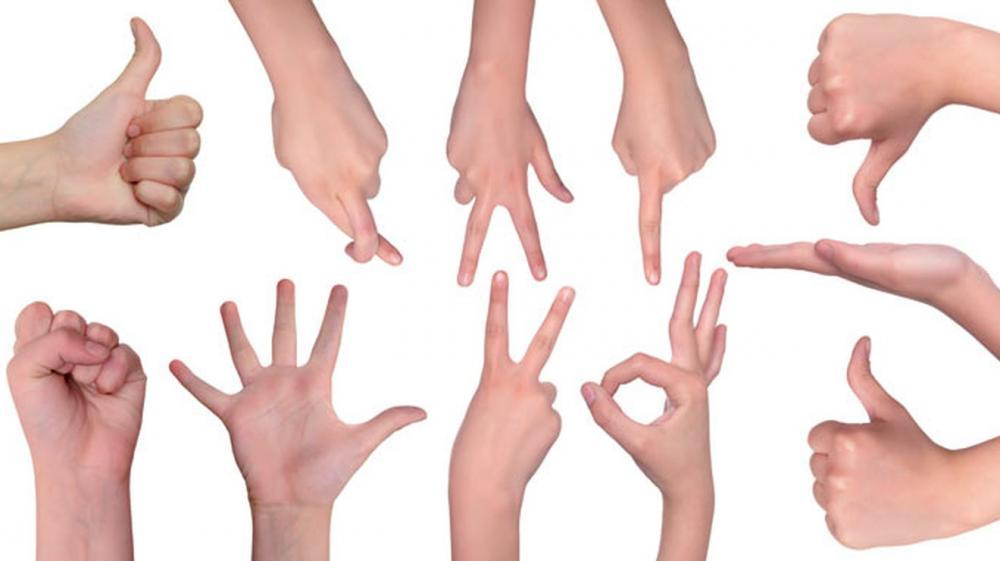النجوم يخوضون تحدي لغة الإشارة